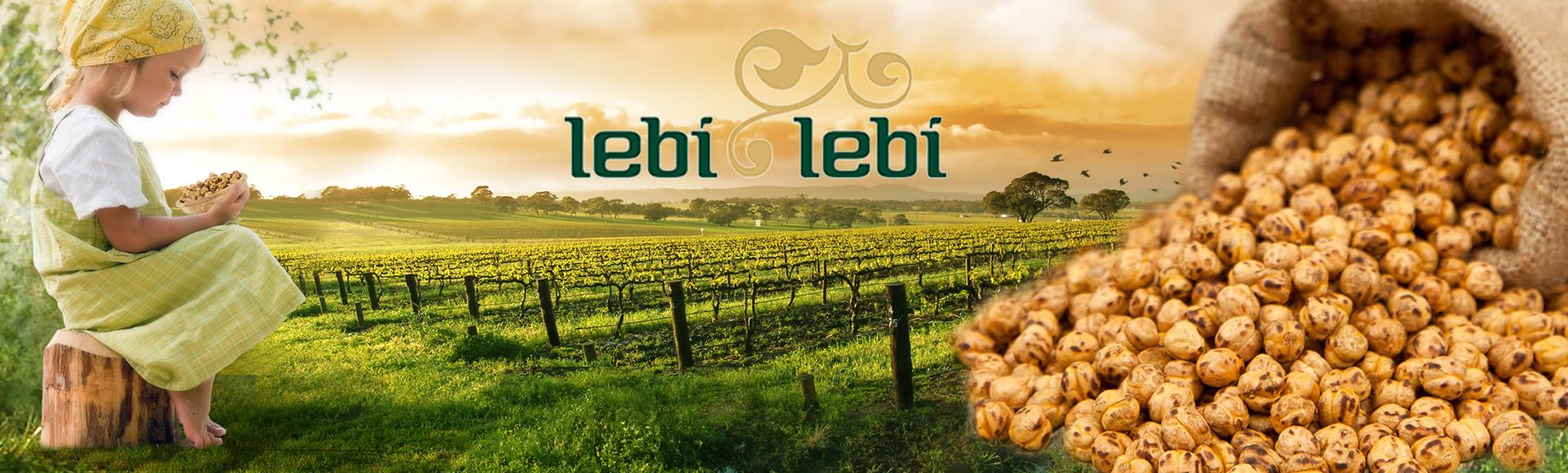 LebiLebi